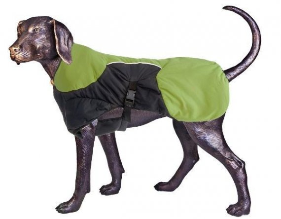 Puff-Doggy - zateplená bunda - Lime/ Blk - Large