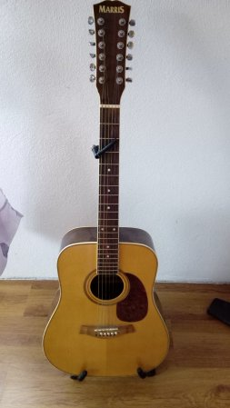 Půjčím na víkend 12-ti strunnou kytaru