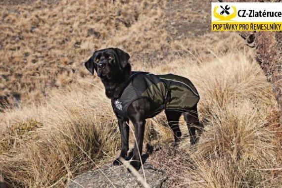 Arma-Doggo - bunda pro psy - Red/ Blk - Petite 1